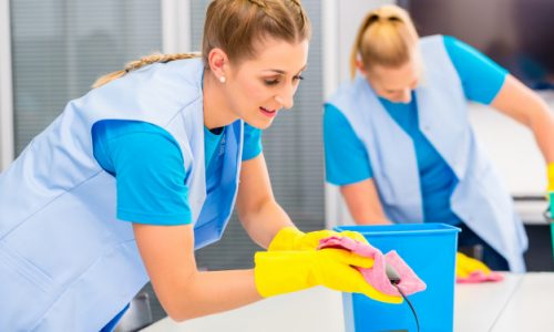 cleaning-ladies-working-office_79405-420